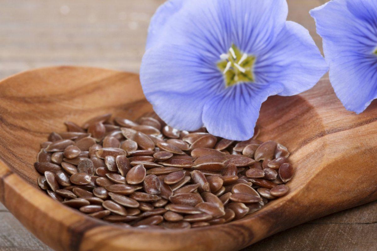 как правильно заваривать семена льна для похудения